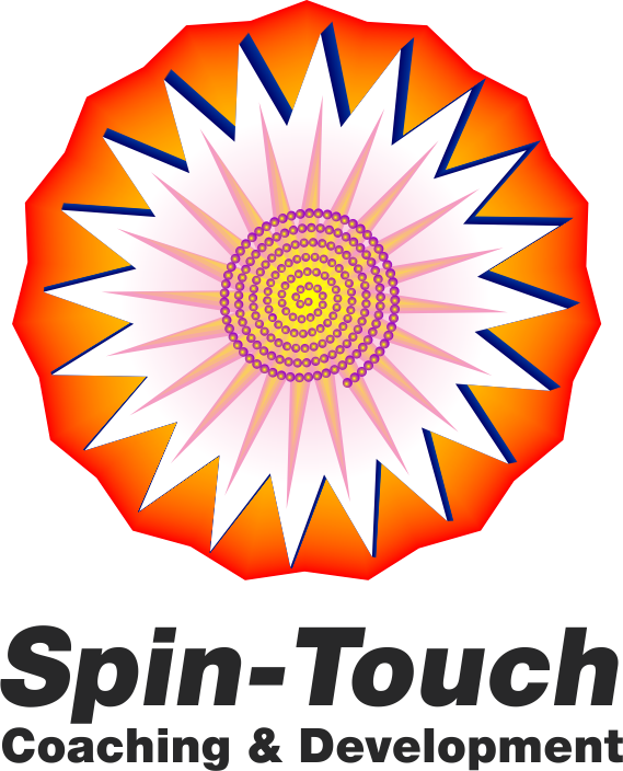 spintouch logo 3-large